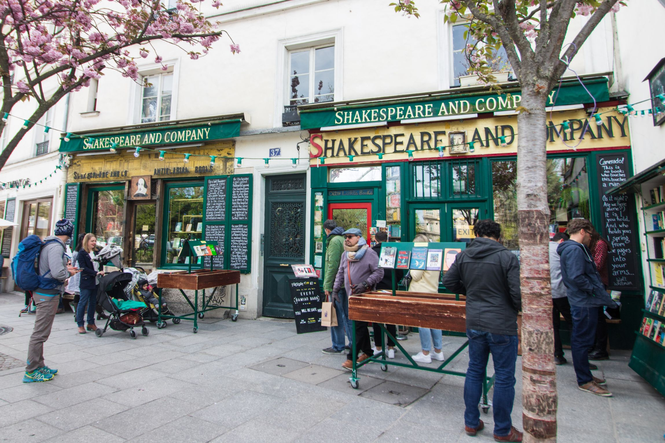 Shakespeare and Company Bookshop Paris. People browsing books outside a bookshop in Spring with blossom trees in foreground.