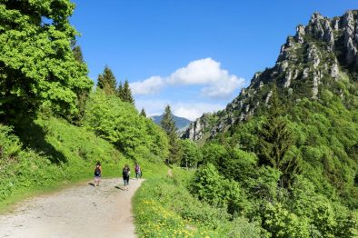 girls-walking-in-luscious-green-mountains-in-the-dolomites-italian-alps-hike-to-rifugio-pernici-valle-di-ledro-lago-di-ledro