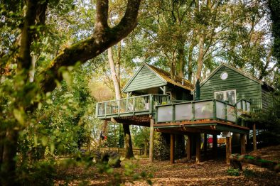 large-green-treehouse-amongst-trees-in-woods-wills-tree-house-upper-tysoe-warwickshire-treehouse-holidays-uk-with-hot-tub