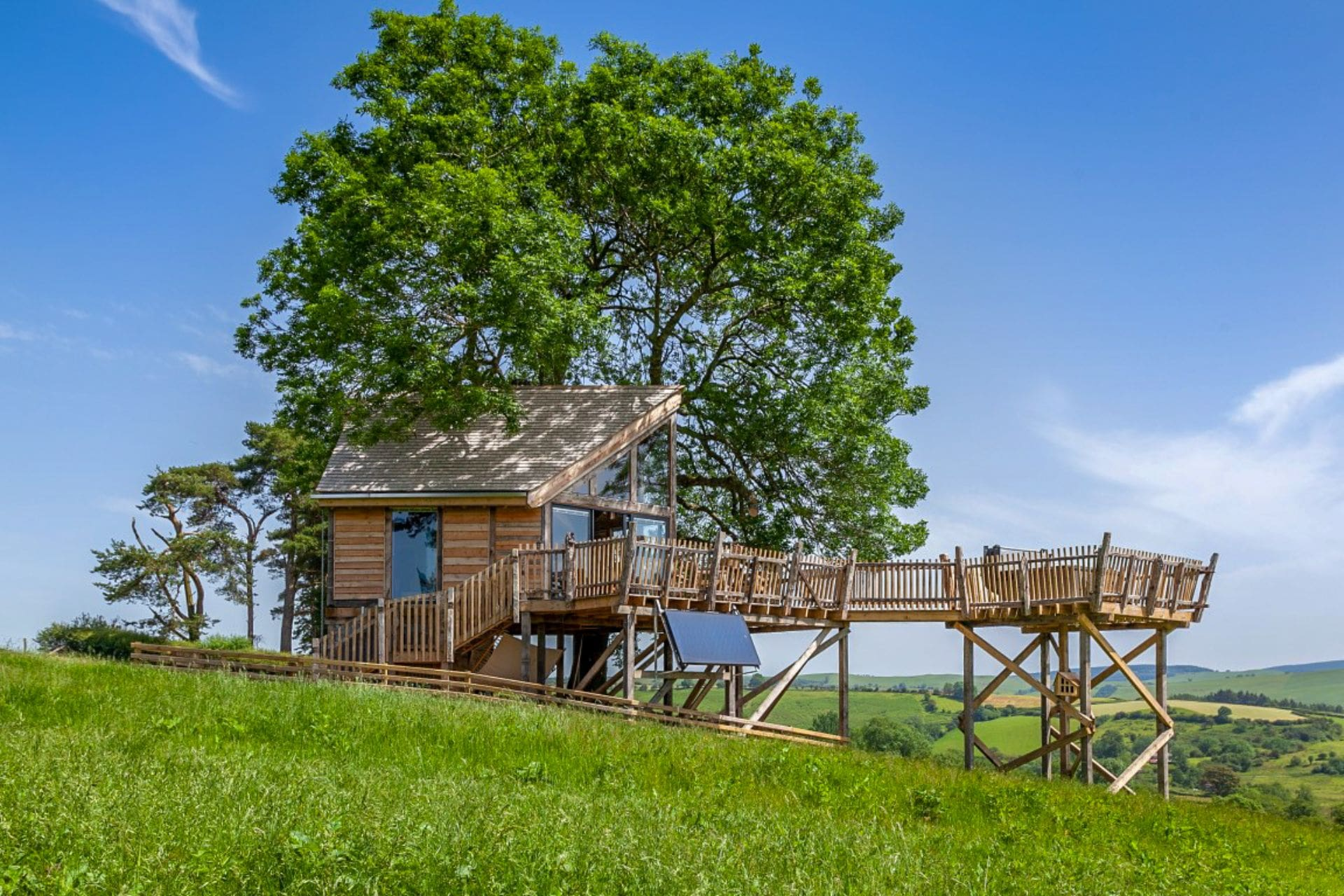 treehouse-in-field-with-rolling-hills-in-background-squirrels-nest-llandrindod-wells-powys-treehouse-holidays-uk-with-hot-tub