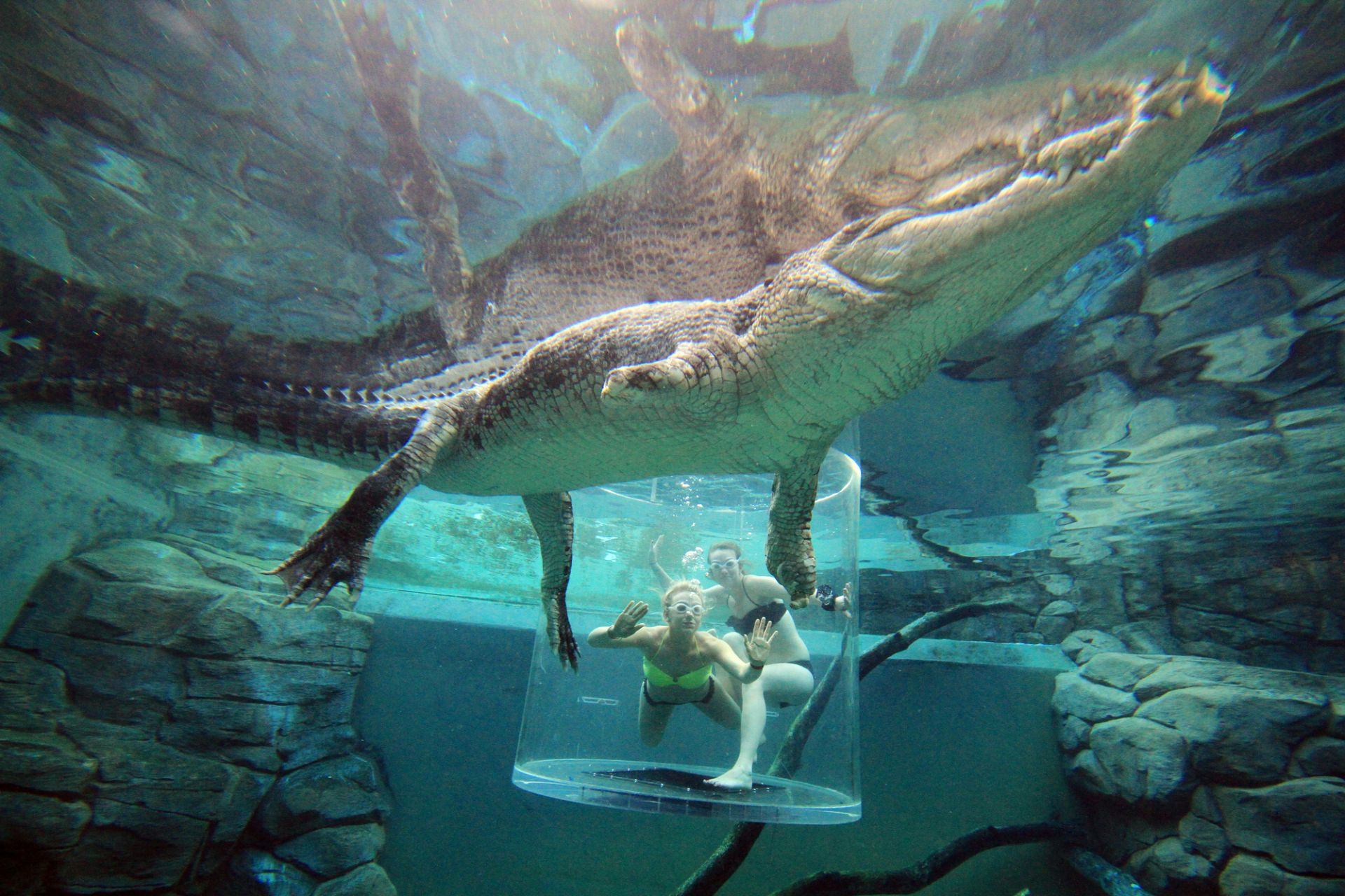 two-girls-underwater-in-cage-of-death-surrounded-by-crocodiles-australia