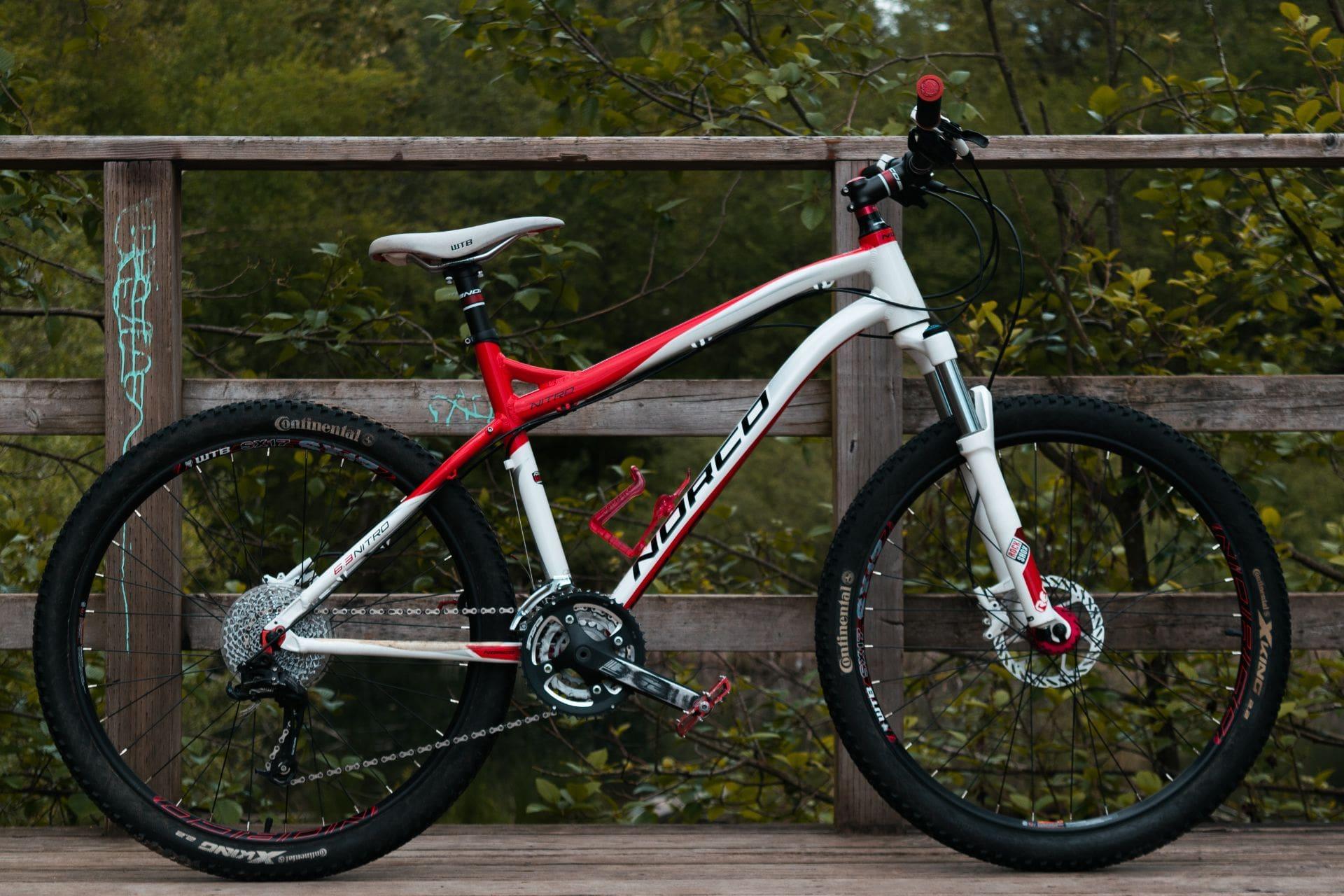 mountain-bike-resting-on-bridge-in-forest