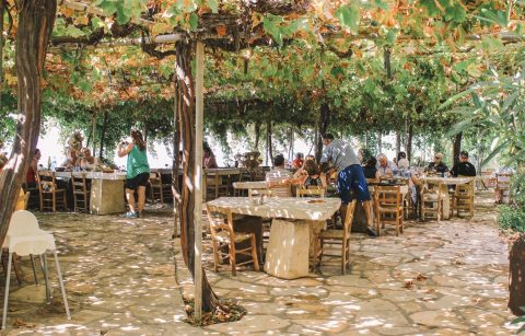 people-eating-at-outdoor-restaurant-under-trees-viklari-the-last-castle-best-restaurants-in-paphos-cyprus