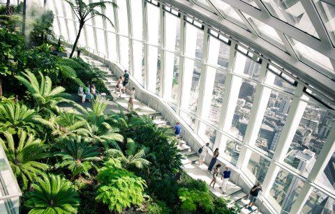 trees-and-plants-in-skyscraper-building-overlooking-city-sky-garden-london-instagram-spots