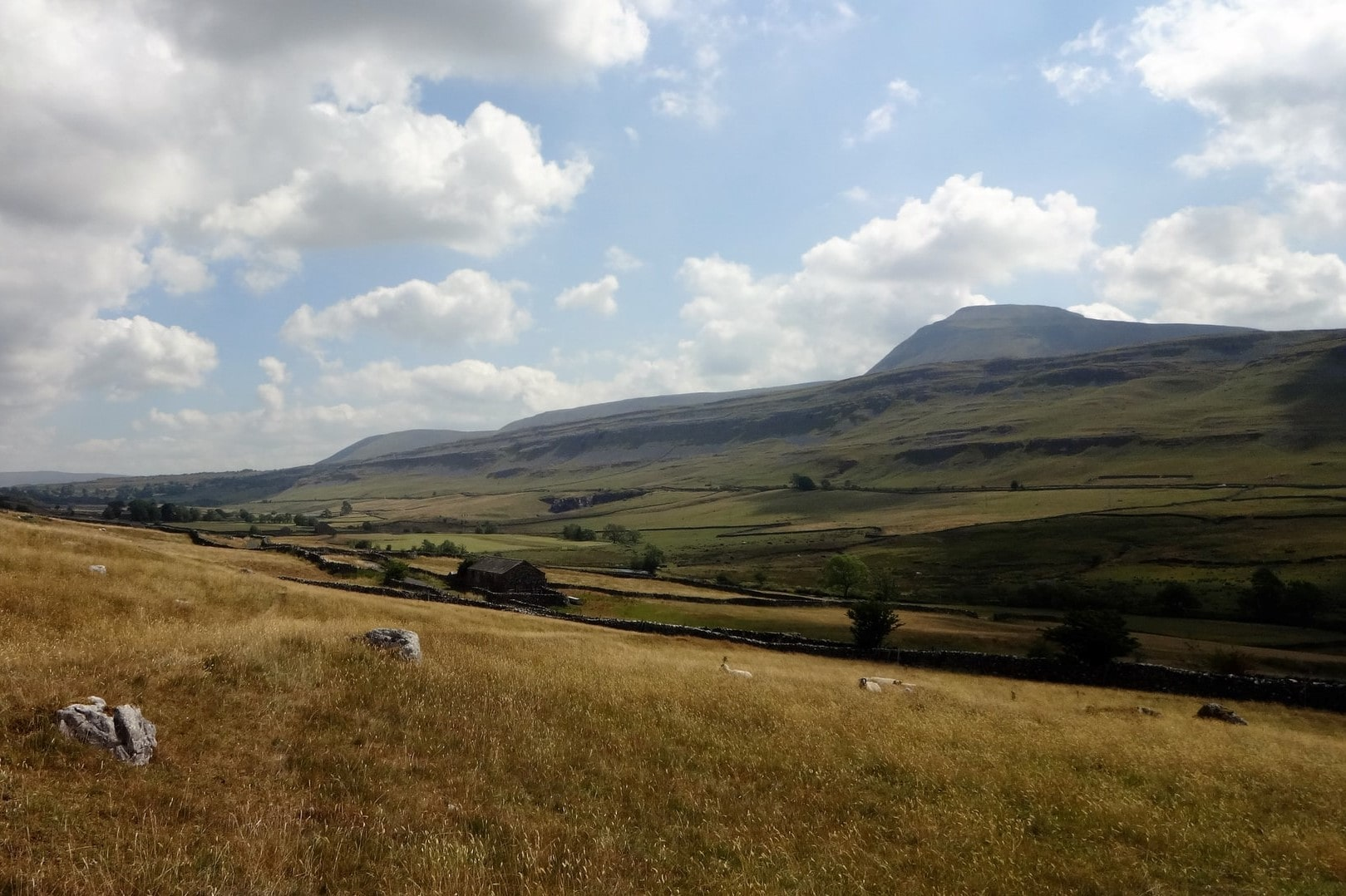 views-aross-fields-and-a-mountain-yorkshire-three-peaks-ingleborough