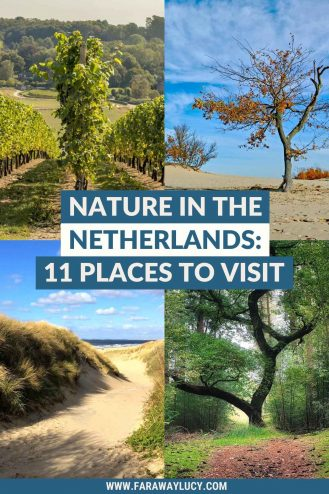 Nature in the Netherlands: 11 Beautiful Places You Need to Visit. There are so many beautiful places in the Netherlands that you need to visit - this guide will show you 11 of the best! Click through to read more...