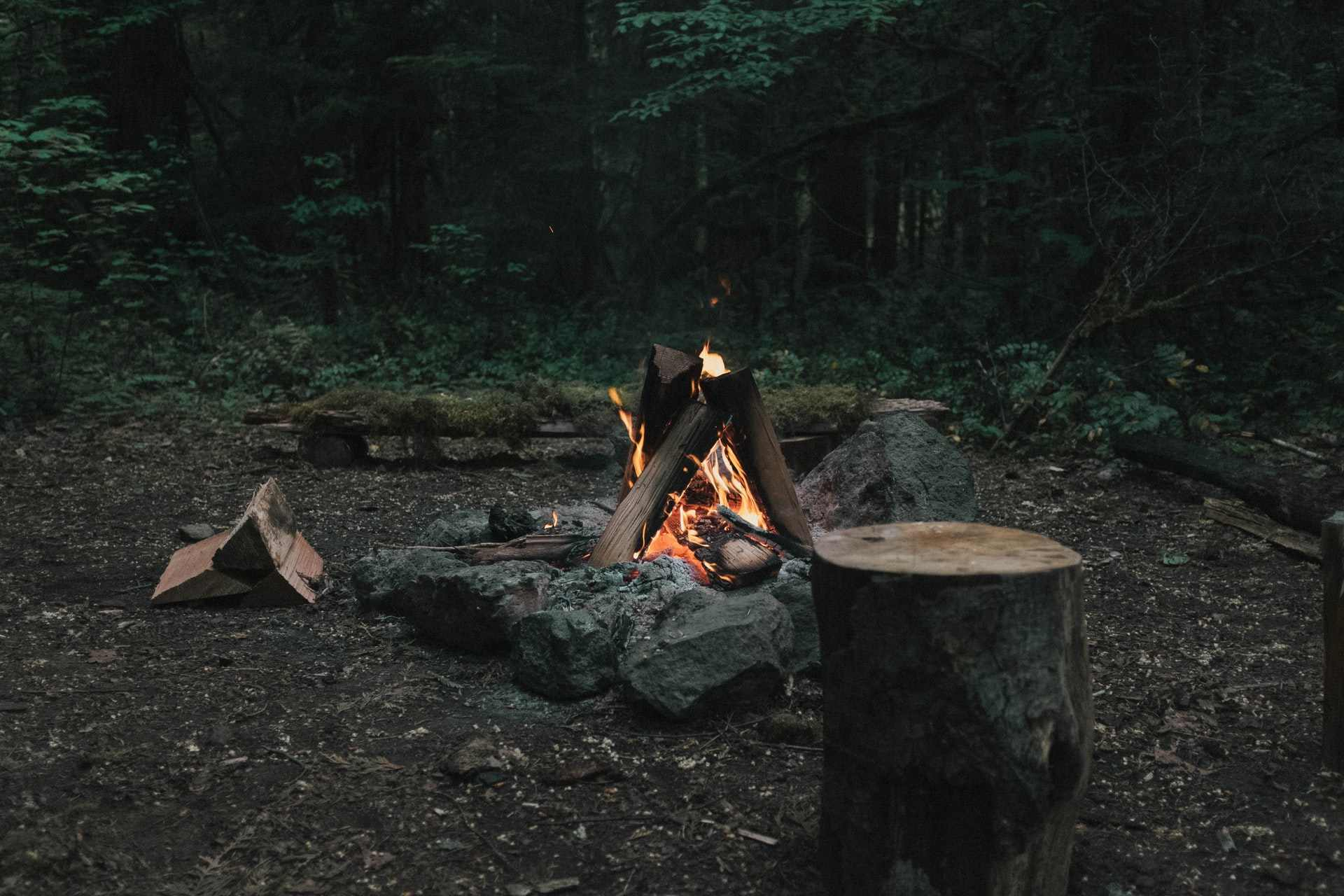 campfire-in-forest-as-sun-goes-down-eco-friendly-camping