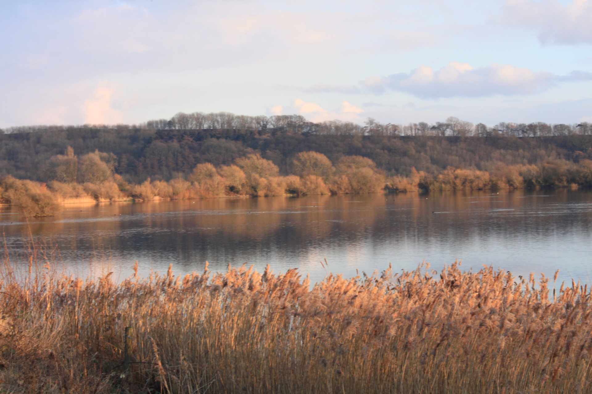 sunset-on-lake-at-attenborough-nature-reserve