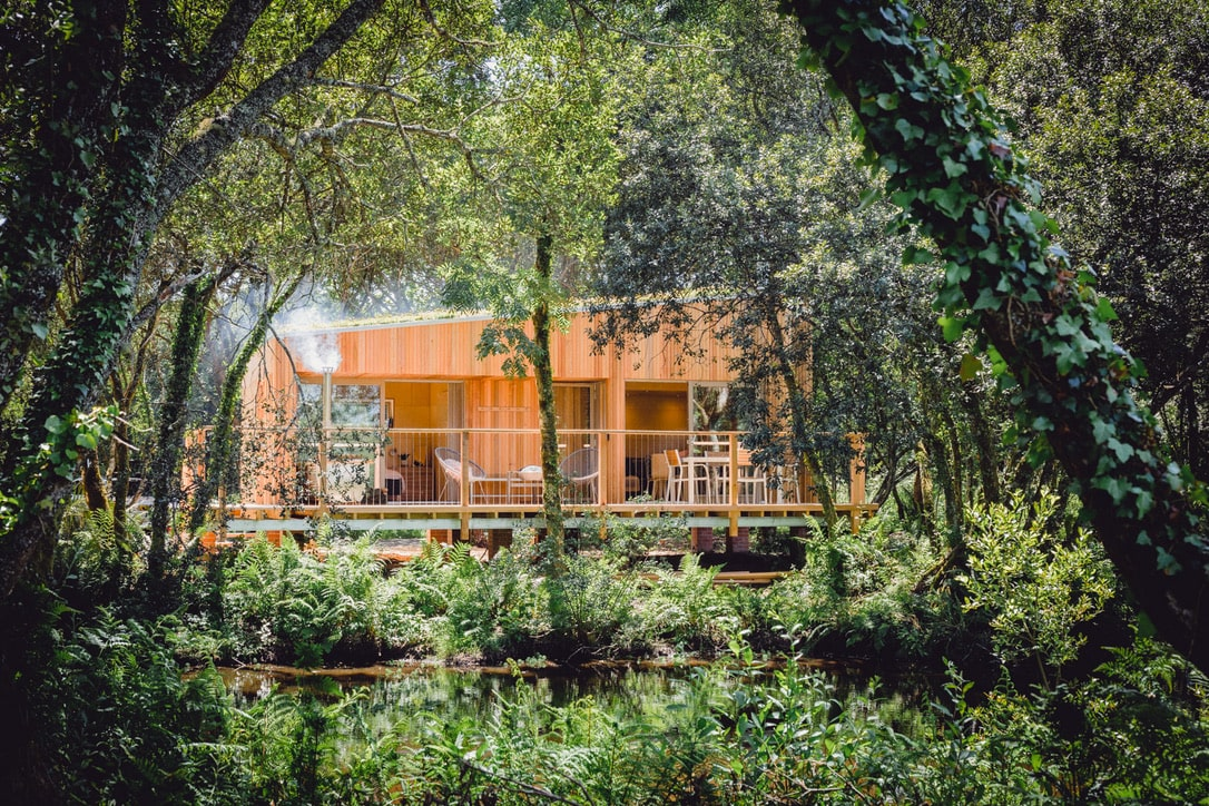trecombe-lakes-lodge-amid-trees-by-lake-in-mawnan-smith-best-airbnbs-in-cornwall