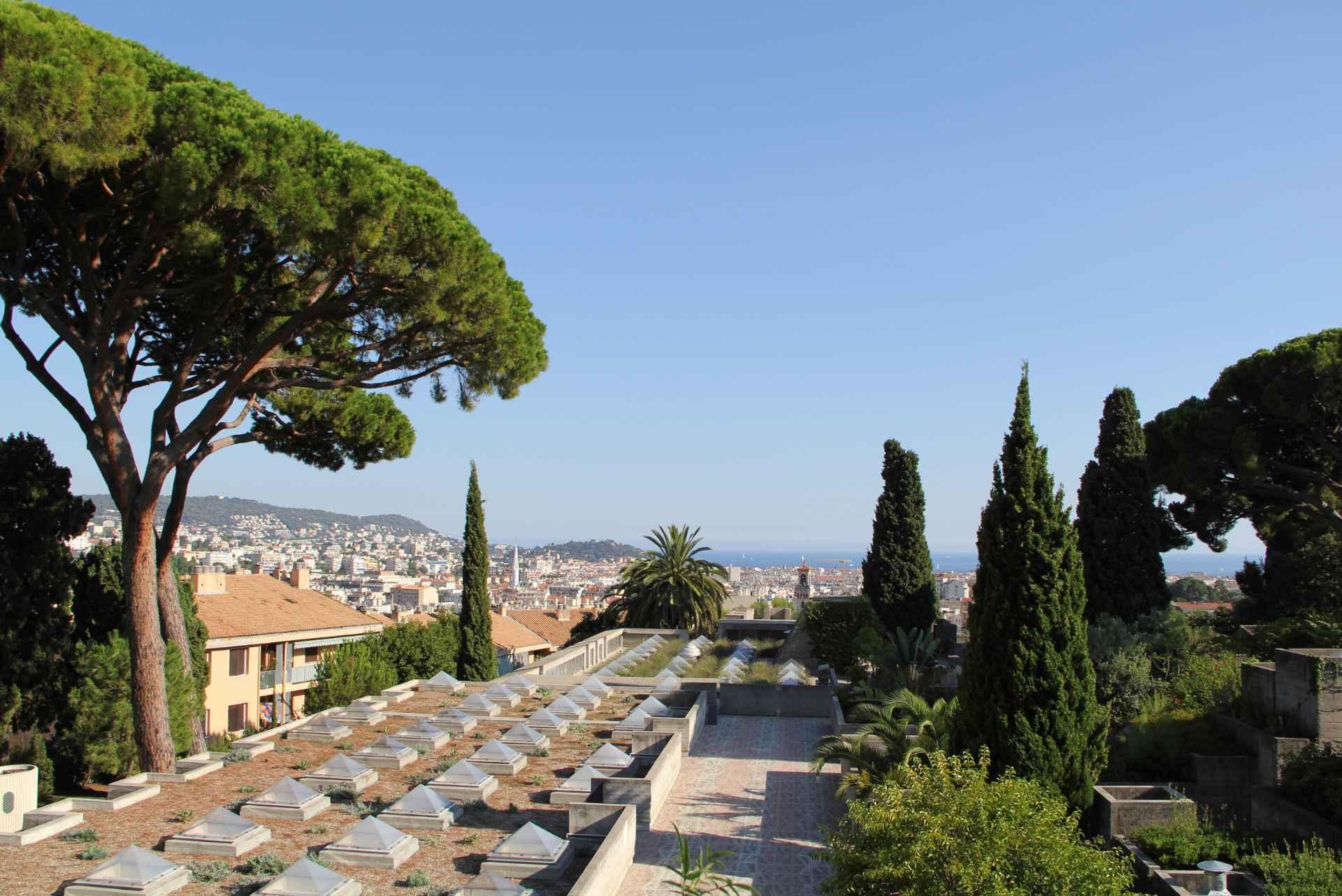 trees-on-hilltop-overlooking-city-villa-arson-art-gallery