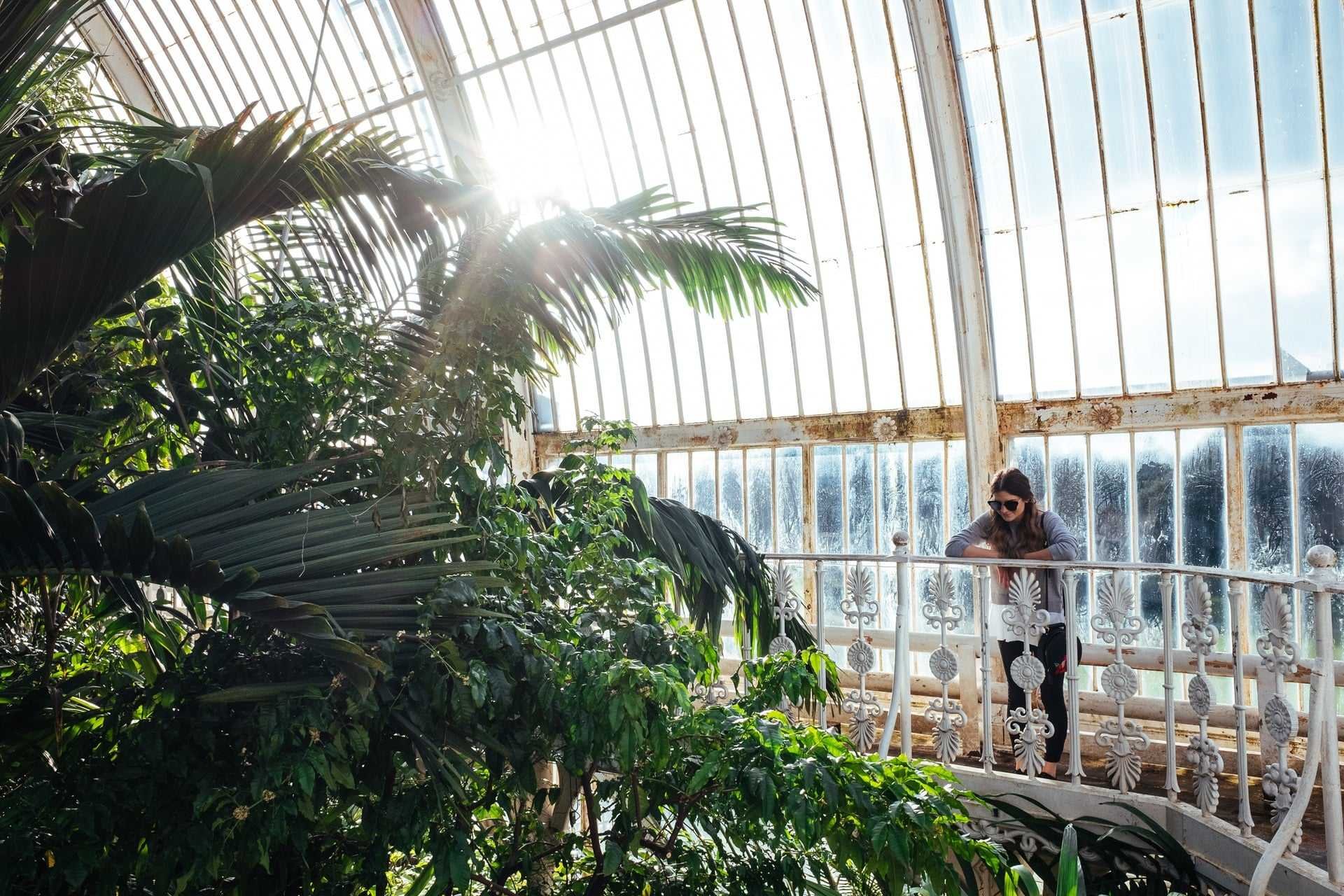 young-woman-standing-on-balcony-in-glasshouse-overlooking-tropical-plants-at-kew-gardens-in-richmond