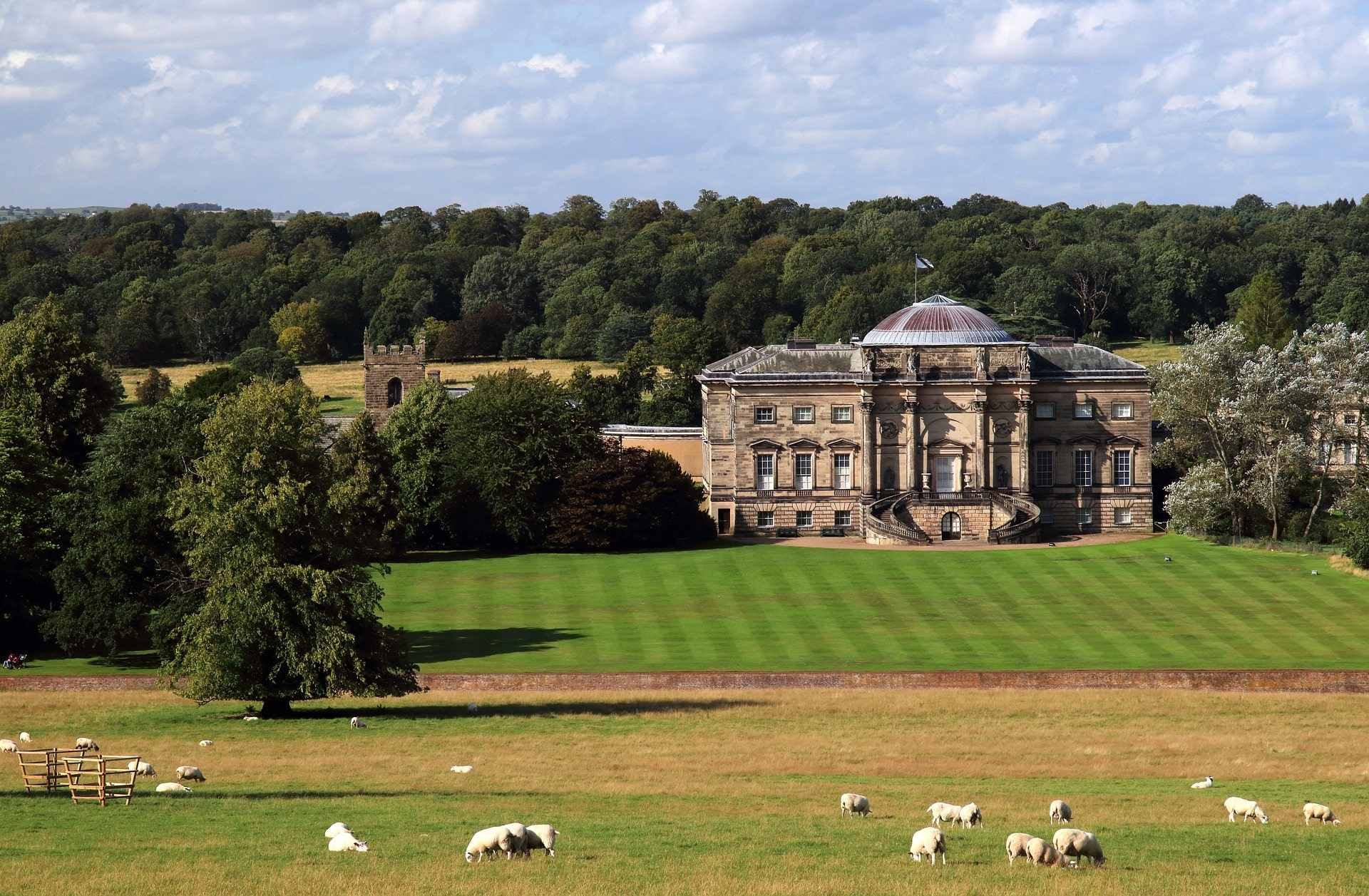 fields-of-sheep-surrounding-kedleston-hall-on-sunny-day-day-trips-from-derby