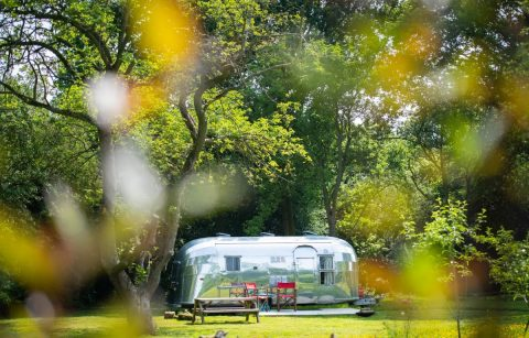 large-silver-airstream-the-caravanner-in-garden-with-trees-at-tin-can-camping-airstreams-glamping-norfolk