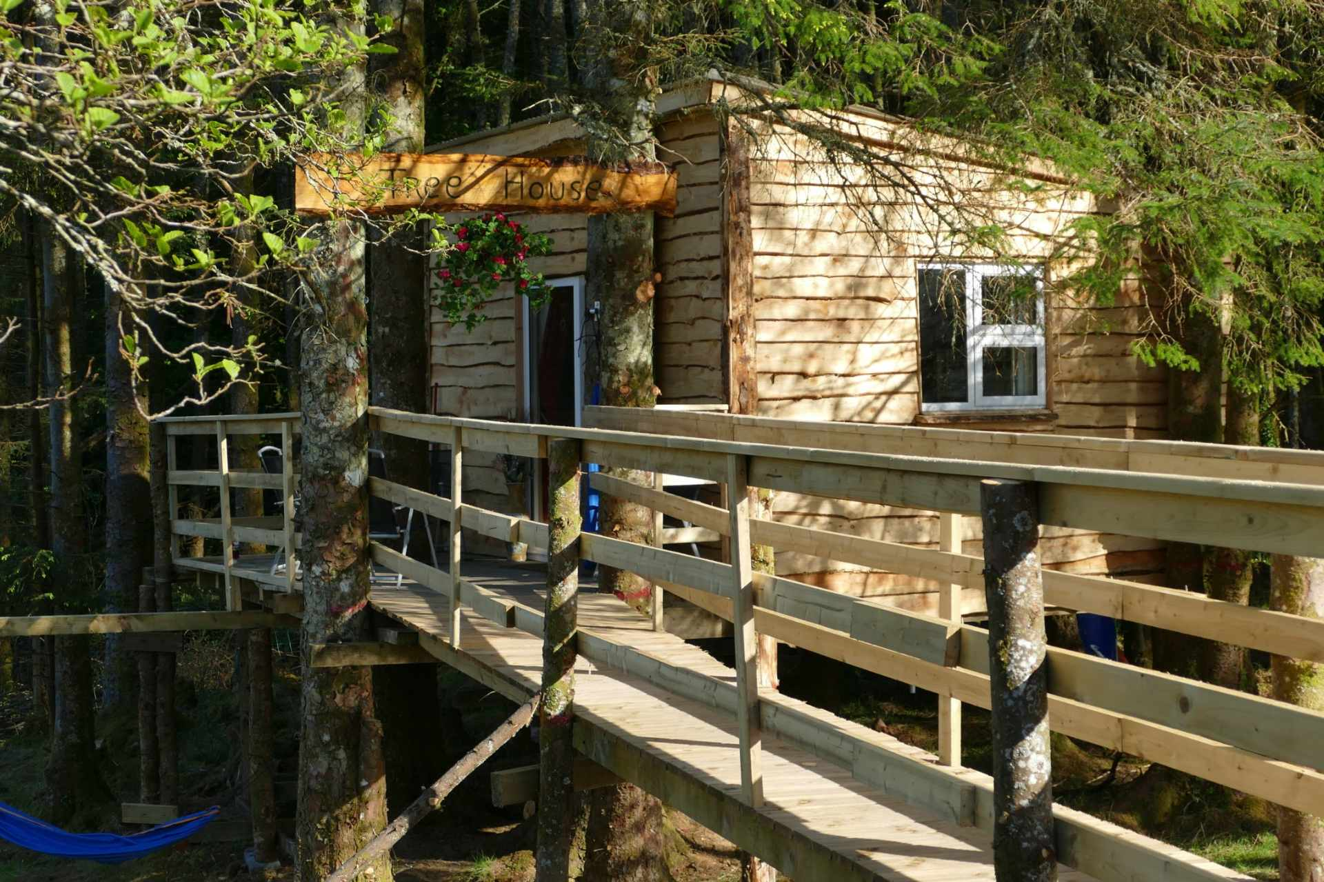 wooden-bridge-leading-up-to-ox-mountain-treehouse-in-forest-treehouses-ireland